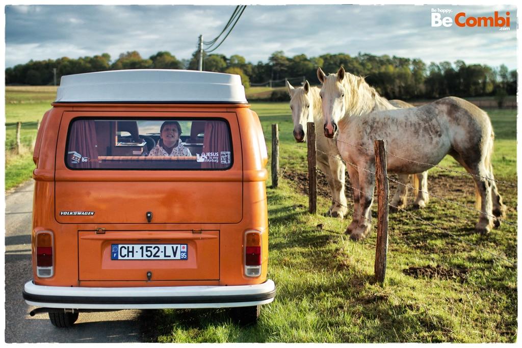 VW-Combi-chevaux-2