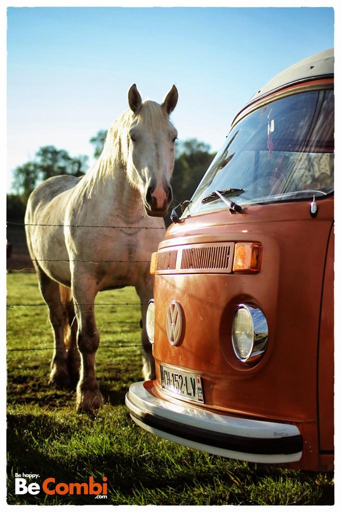VW-Combi-chevaux