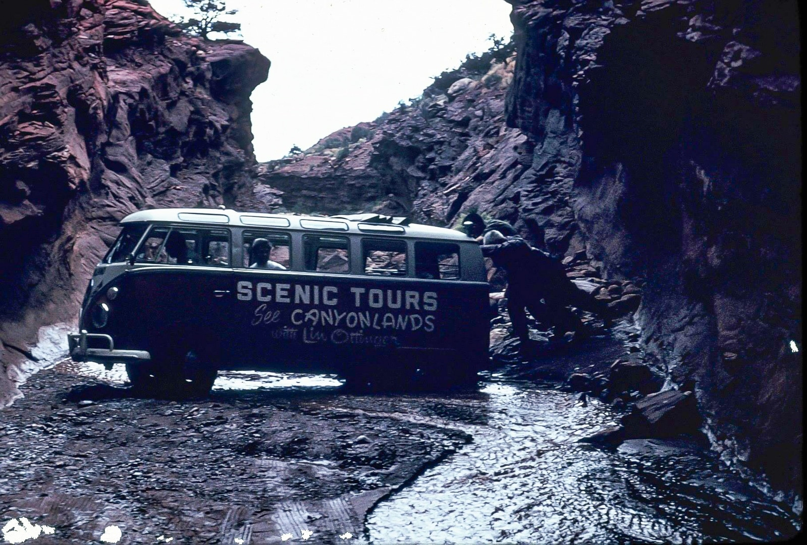 Lin Ottinger Canyon Land Scenic Tour VW Bus - BeCombi - Une-19