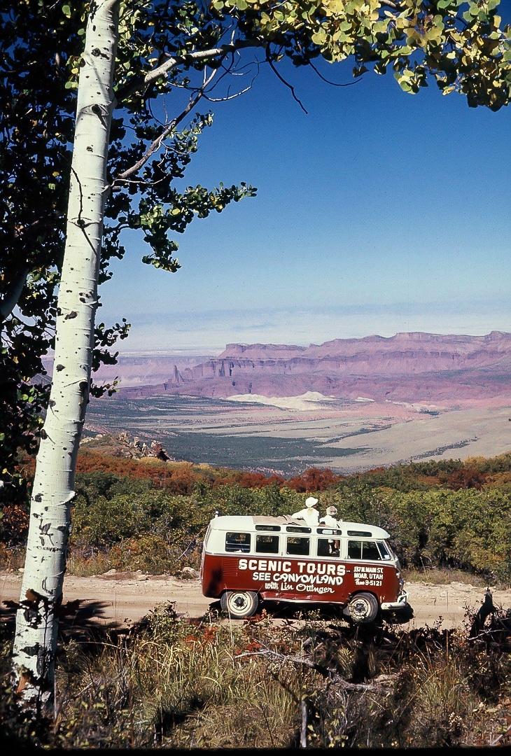 Lin Ottinger Canyon Land Scenic Tour VW Bus - BeCombi - Une-26
